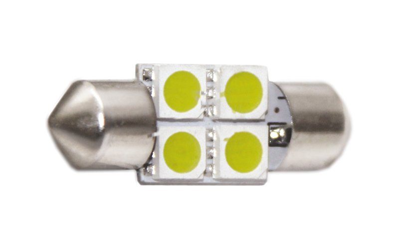 T11-005(31mm) 5050-4 12V ST